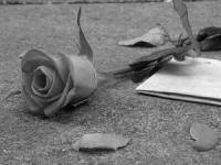 brokenhearton9.jpg