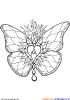 Schmeterlings Mandala.jpg